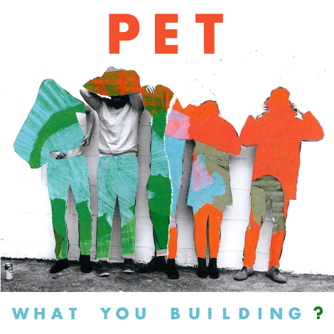 PET - What you building- - cover