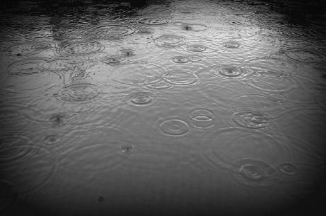 Rain Pond