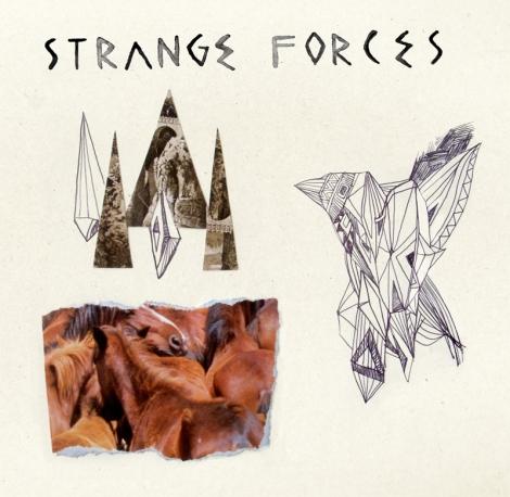 StrangeForces